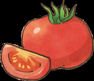 【肥胖汪喵飲食】肥胖毛孩救星!高纖低熱量~最強減肥蔬菜登場!