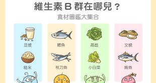 維生素B群在哪兒,食材圖鑑大集合