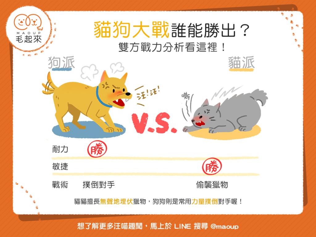 【汪喵小學堂】狗狗 vs. 貓貓——狩獵比賽誰能勝出?