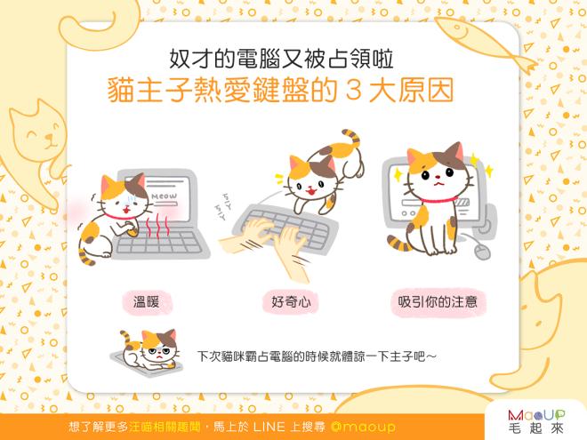 【喵喵行為學】電腦又被占領啦(哭)貓貓熱愛鍵盤的原因是?!