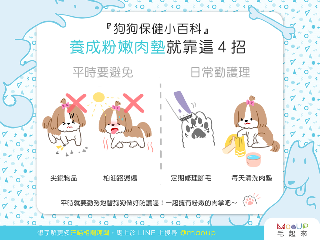 【汪汪康健】想成為狗界網美?4招粉嫩肉墊養成術!