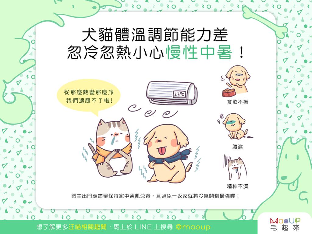 【汪喵生活家】犬貓體溫調節能力差!忽冷忽熱,當心慢性中暑!