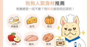【鮮食烹飪秘訣】狗狗人氣食材 TOP 6!用新鮮食材替狗狗加菜吧!