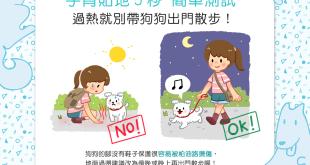 【汪汪出門趣】手背貼地5秒——過熱就別帶狗狗出門散步!