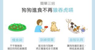 【汪喵餵養知識】簡單三招,讓狗狗進食不再狼吞虎嚥!