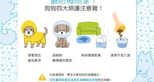 【汪喵生活家】大雨大雨一直下——狗狗4大照護注意報!