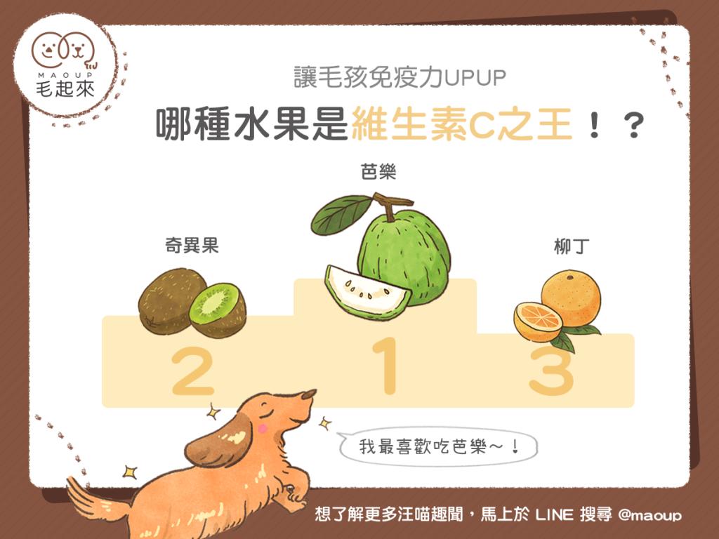 【毛孩食材圖鑑】用水果代替零食更健康!哪種水果是維生素C之王?