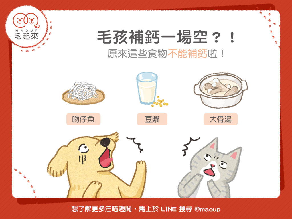 【毛孩食材圖鑑】毛孩補鈣一場空?原來這些食物不能補鈣!