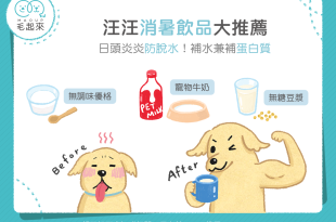 【汪喵餵養知識】汪汪消暑飲品大推薦 補水兼補蛋白質!