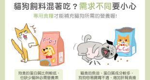 貓狗飼料混著吃?需求不同要小心