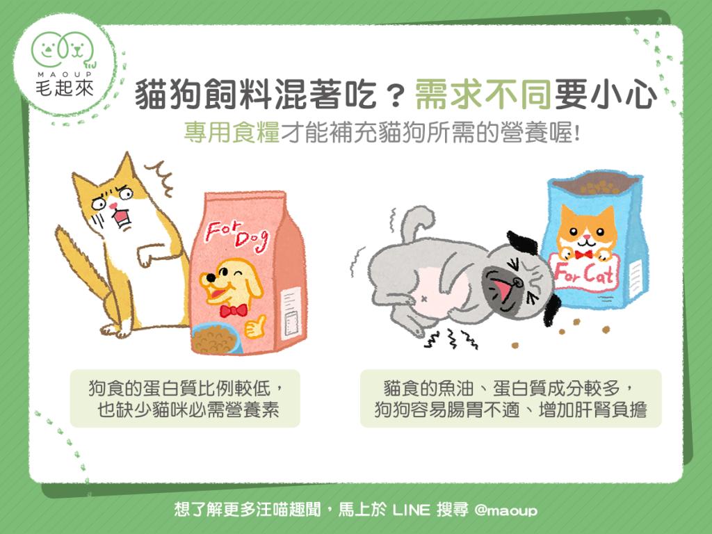 【汪喵餵養知識】貓狗飼料混著吃?需求不同要小心