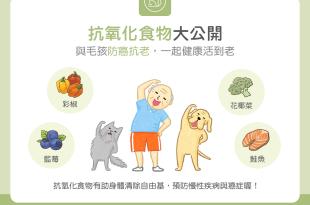 抗氧化食物大公開 與毛孩防癌抗老,一起健康活到老