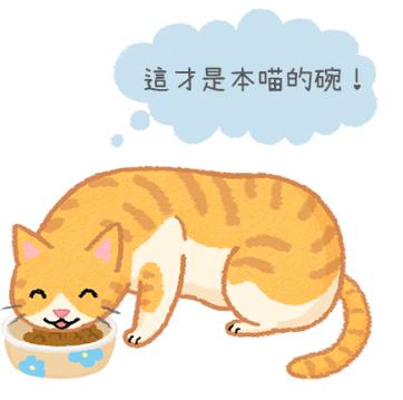 【汪喵餵養知識】貓咪也會認碗嗎?主子就是任性~我要專屬食碗!