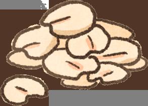 穀類容易過敏?