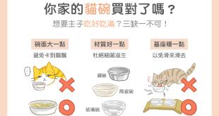 【汪喵餵養知識】你家的貓碗買對了嗎?吃好吃滿3缺1不可!