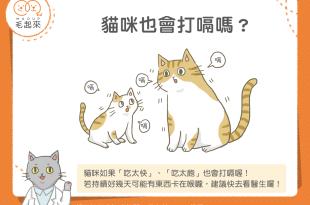 【汪喵餵養知識】嗝~嗝~嗝!貓咪也會打嗝嗎?