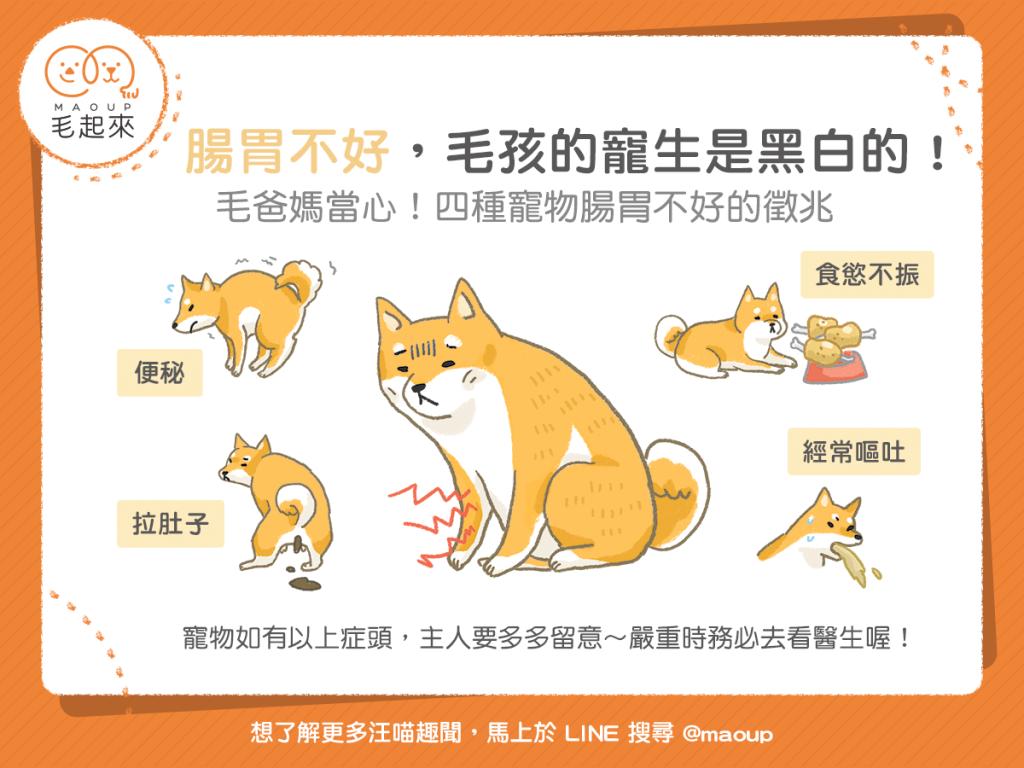 【汪喵餵養知識】腸胃不好,毛孩的寵生是黑白的!四種腸胃不好的徵兆