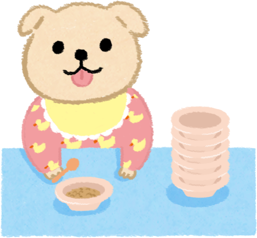 四個月以下的幼犬、幼貓一天吃4-8餐
