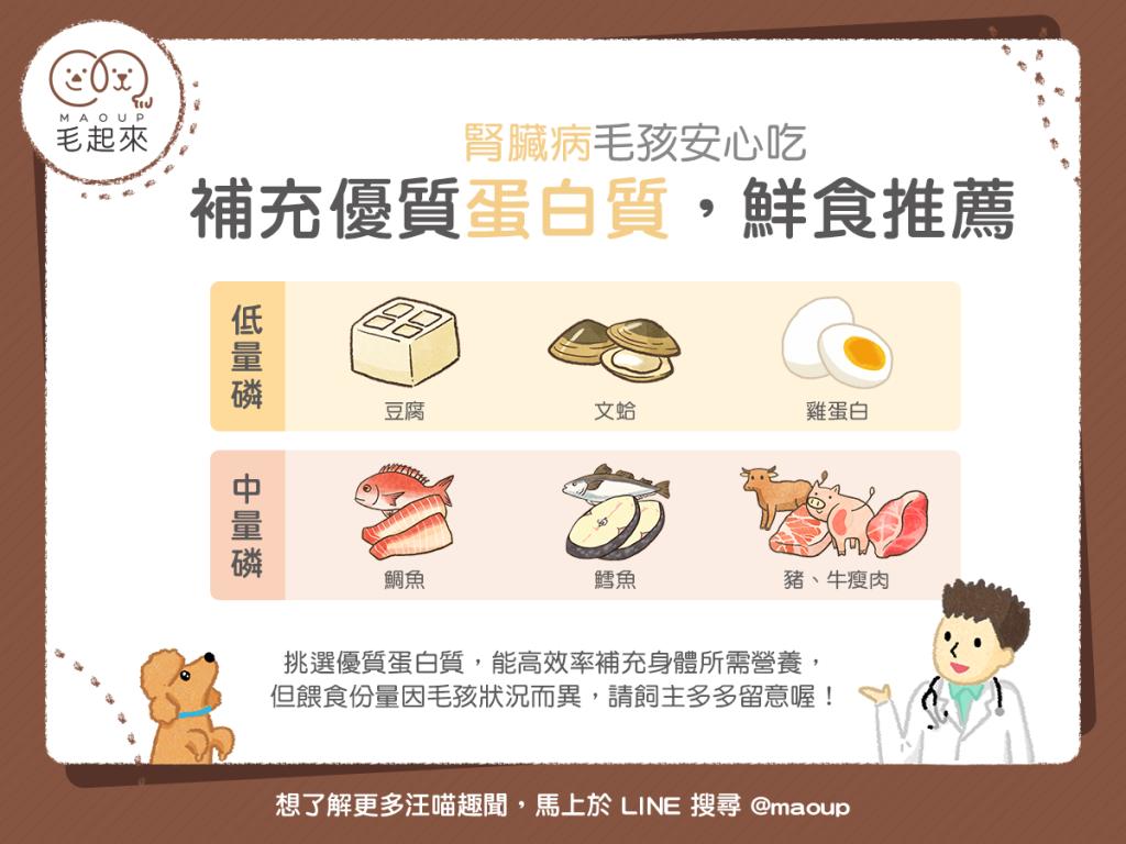 【汪喵疾病飲食】優質蛋白質推薦 腎臟病毛孩安心吃