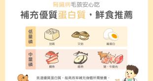 貓狗疾病飲食腎臟病飲食寵物毛孩鮮食優質蛋白質低磷食材豆腐雞蛋文蛤中磷飲食雕魚鱈魚牛豬瘦肉