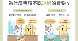 【汪喵餵養知識】傷腦筋~為什麼毛孩不吃冰過的食物?