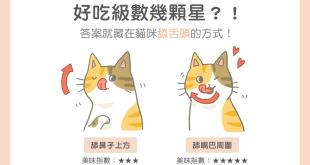 【汪喵餵養知識】好吃級數幾顆星?答案就藏在貓咪舔舌頭的方式!