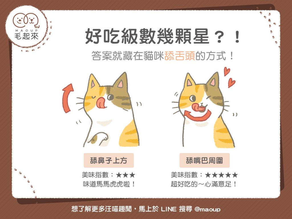 【汪喵餵養知識】好吃級數幾顆星?答案藏在貓咪舔舌頭方式!