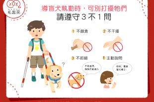 【不可不知】導盲犬值勤時,可別打擾牠們——請遵守3不1問!