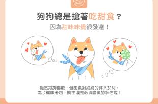 【汪喵餵養知識】狗狗總搶著吃甜食?因為甜味味覺很發達!