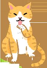 米克斯貓壽命
