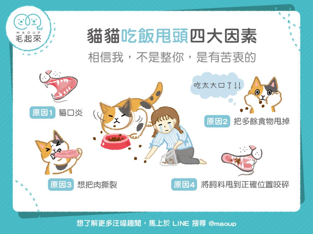 【汪喵餵養知識】不是整你喵~貓貓吃飯甩頭四大因素!