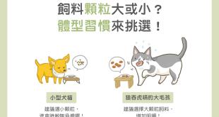 【汪喵餵養知識】飼料顆粒大或小?體型習慣來挑選!
