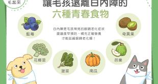 【毛孩食材圖鑑】讓毛孩遠離白內障的6種青春食物!