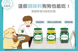 【鮮食烹飪秘訣】這些調味料狗狗也能吃!點綴鮮食的秘密武器