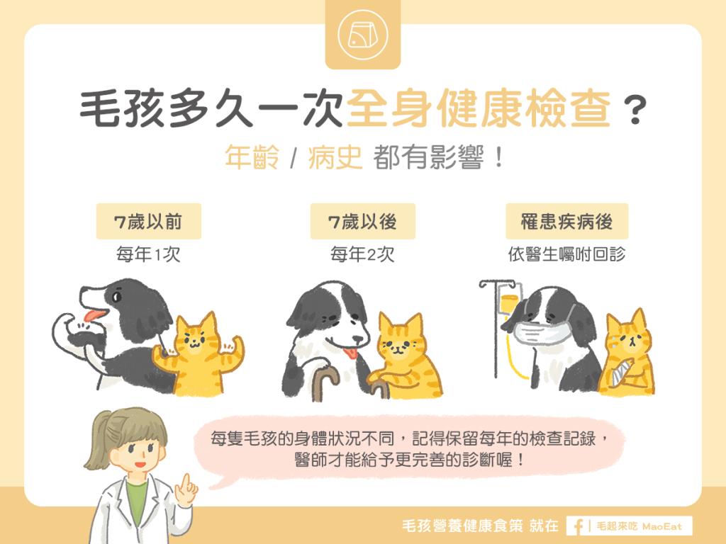貓狗多久健康檢查?年齡病史都有影響!