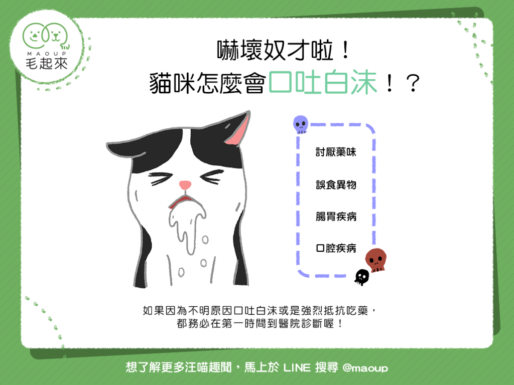 【喵喵康健】嚇!貓咪怎麼會口吐白沫!?