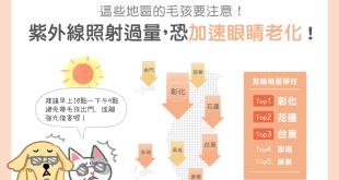 貓狗也會受到紫外線傷眼,這些縣市要別注意超量