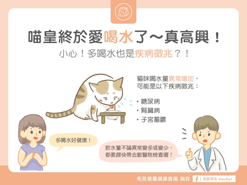 貓咪不愛喝水可能造成糖尿腎臟子宮疾病