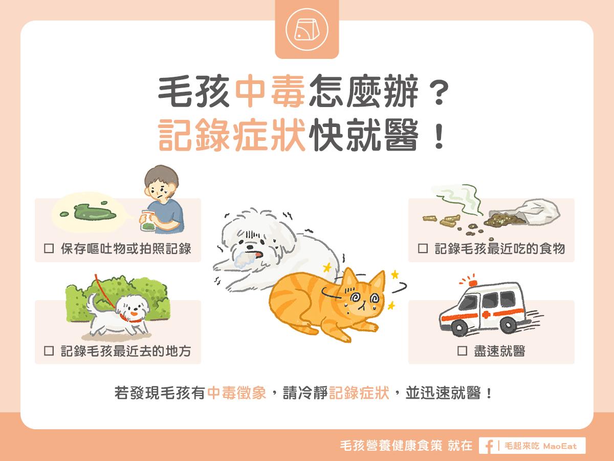 狗狗貓咪中毒怎麼辦?