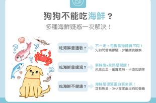 狗狗能吃海鮮過敏迷思破除