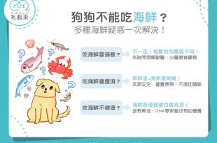 【汪喵餵養知識】狗狗不能吃海鮮?3大迷思一次解決!