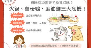 【汪喵餵養知識】貓狗需要冬季進補嗎?小心火鍋、薑母鴨、麻油雞三大危機!