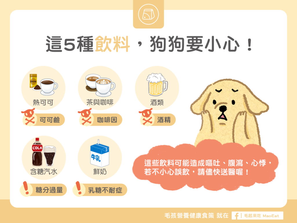 狗狗不能吃的食物禁忌禁碰禁食咖啡啤酒茶熱可可熱巧克力汽水鮮奶種飲料少喝
