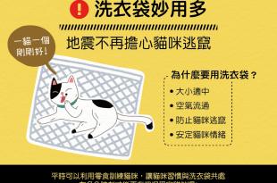 【地震注意報】洗衣袋妙用多~地震不再擔心貓咪逃竄!