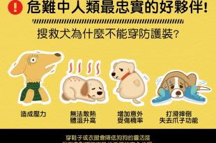 【地震注意報】人類最忠實的好夥伴-搜救犬不能穿防護裝?