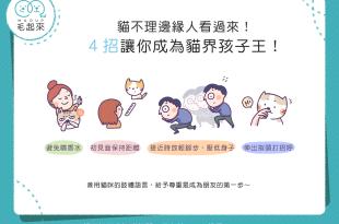 【喵喵小學堂】貓不理邊緣人看過來!4招讓你成為貓界孩子王!