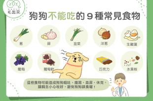 【毛孩食材圖鑑】一定要記起來!狗狗不能吃的9種常見食物!