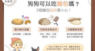 【毛孩食品解析】狗狗可以吃麵包嗎?3個麵包陷阱要小心!