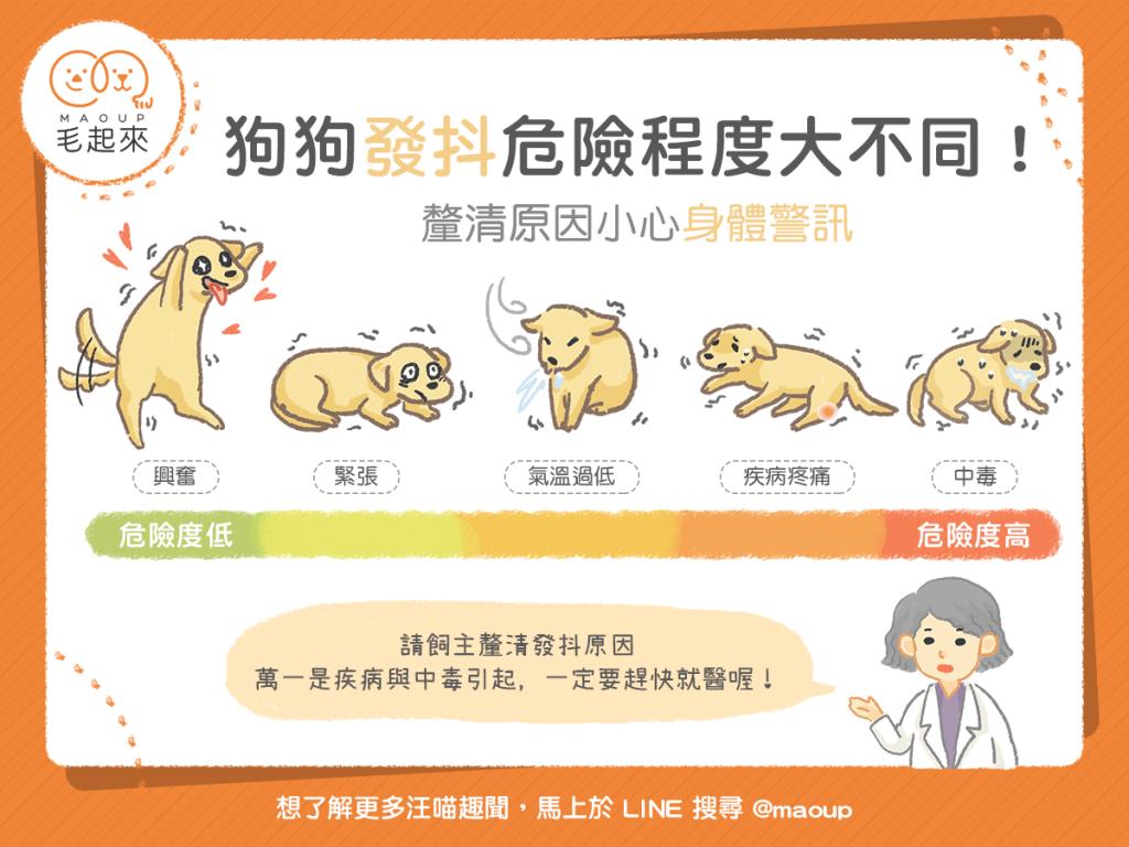 【汪喵餵養知識】狗狗發抖危險程度大不同!快來釐清發抖原因!