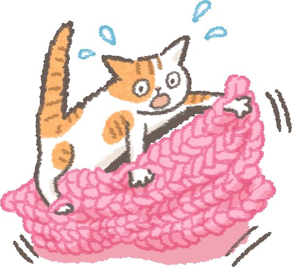 貓狗寵物天冷蓋被隱憂勾到纏到燙到加熱毯針織物保暖注意事項
